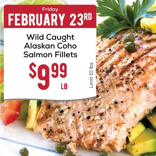 02-23-Coho-Salmon